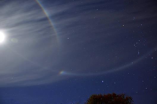 Amazing Night Sky by Charlotte Schafer