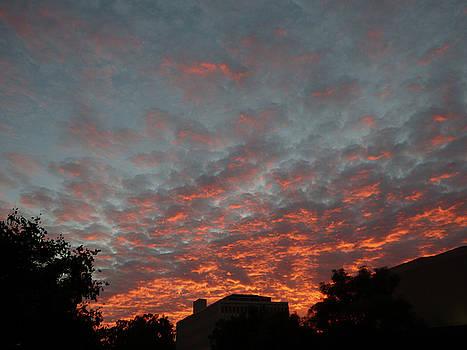Amazing Sky by Natalya Shvetsky