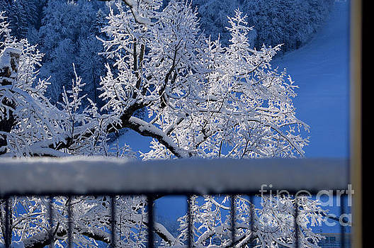 Amazing - Winterwonderland in Switzerland by Susanne Van Hulst