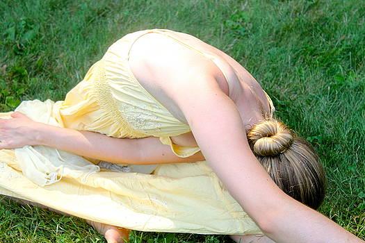 Amber in the Sunlight by Nancy Furstinger