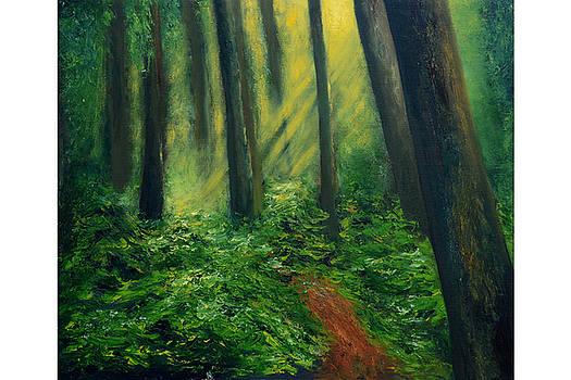 Ambiance - A Drought of Sunshine by Shankhadeep Bhattacharya