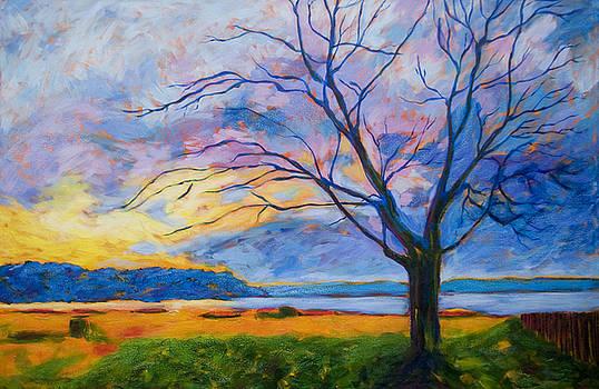 Ambleside Tree by Lisa Wolfin