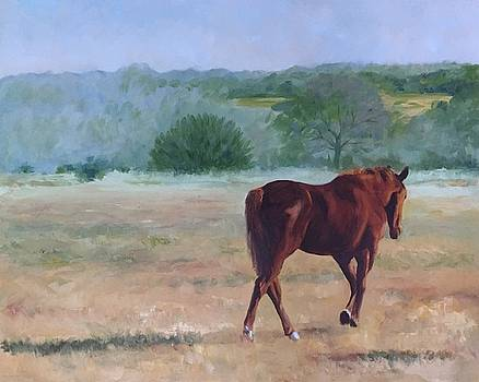 Ambling to Pasture by Connie Schaertl