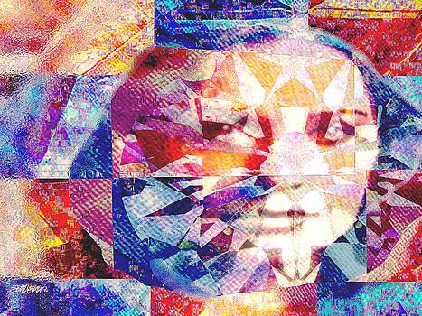 AmeraDonna by Seth Weaver