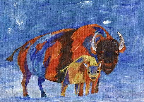 American Bison by Jamie Frier
