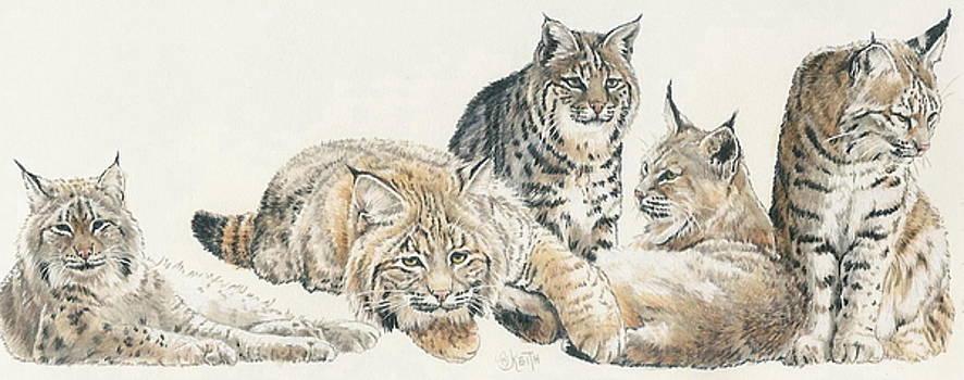 Barbara Keith - American Bobcat