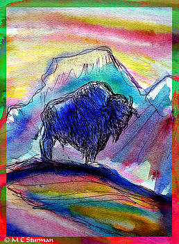 American Buffalo Sunset by M c Sturman
