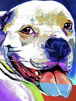 American Bulldog 01 by Nixo by Nicholas Nixo