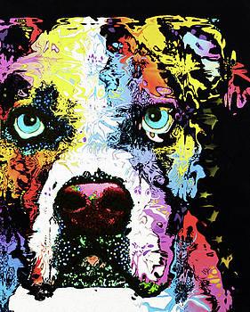 American Bulldog by Nixo by Nicholas Nixo