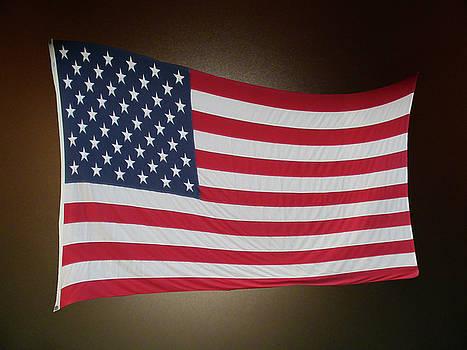 American Flag  by Patricia Keller