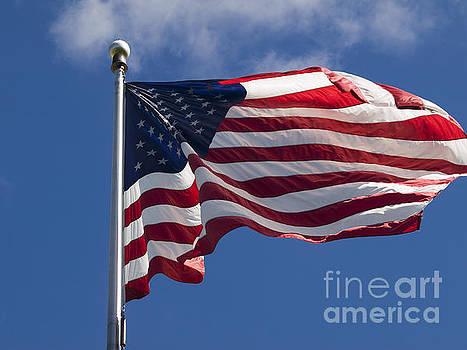 American Flag by Tara Lynn