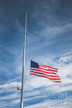 American Flags at Half Staff by Leslie Banks