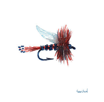 American Fly by Sean Seal