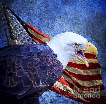 American Freedom  by Nicole Markmann Nelson