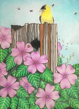 American Gold Finch Among Pink Impatiens by Janet Hinshaw