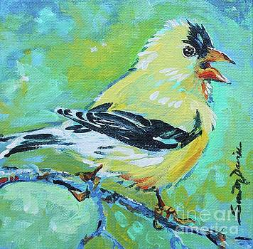 American Goldfinch by Susan Davies