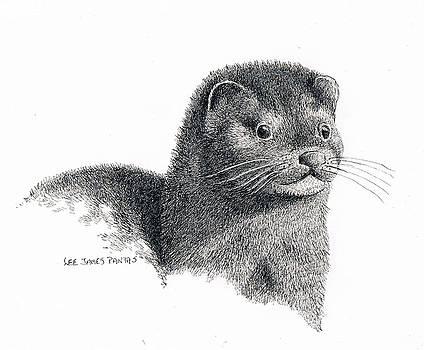 Lee Pantas - American Mink
