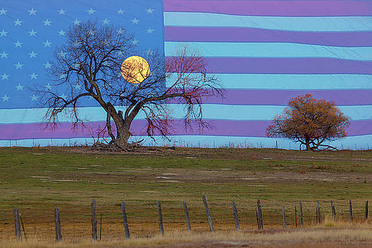 American November Supermoon by James BO Insogna