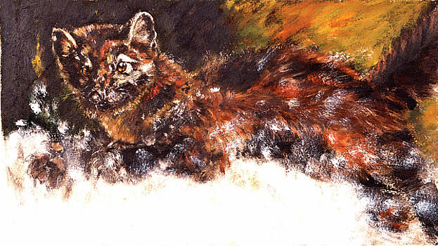 American pine marten in the snow by Belette Le Pink