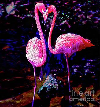 American Pink Flamingos Orlando Fl 3030300148 by Tom Jelen