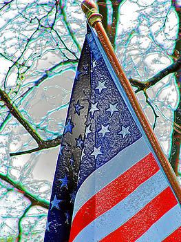 American Pride by Jeffery Bennett