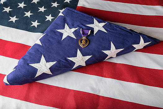American Purple Heart Hero by James BO Insogna