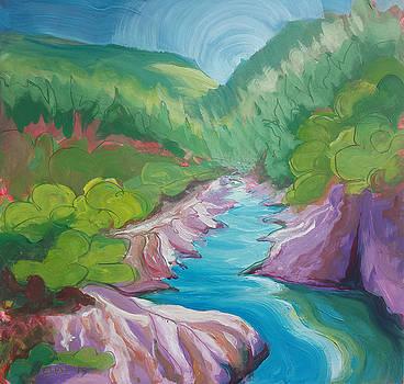 American River 1 by Pam Van Londen
