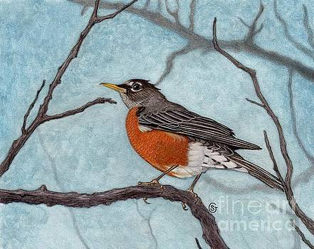 American Robin the Harbinger of Spring by Sherry Goeben