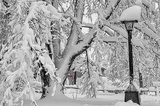 James BO Insogna - American Snow Storm