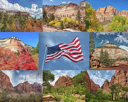 John M Bailey - American Splendor - Zion National Park