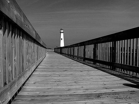 American Wood Way Black and White by Marko Mitic