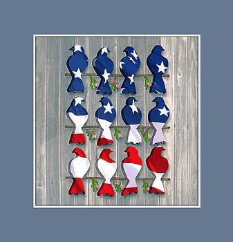Americana Birds by Nina Bradica