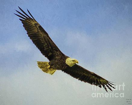 America's Bird by Bill Baer