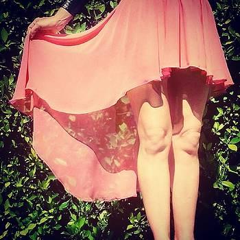 Sofia Metal Queen - Ameynra fashion chiffon high low skirt 018