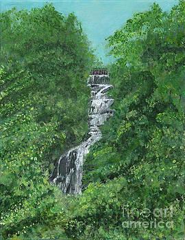 Amicalola Falls by Joel Charles