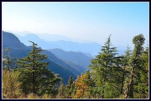 Amidst Valleys by Sonali Gangane