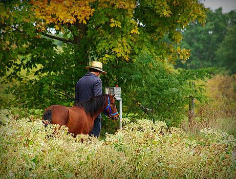 Amish Autumn by Linda Mishler