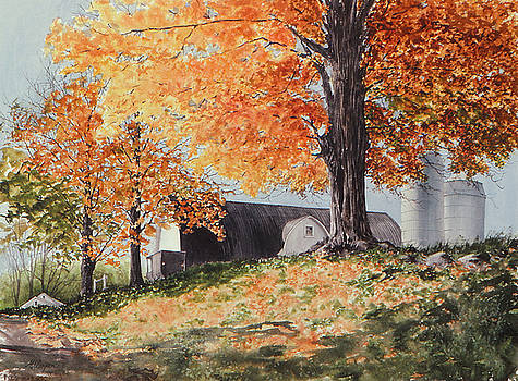 Amish Autumn by Maryann Boysen