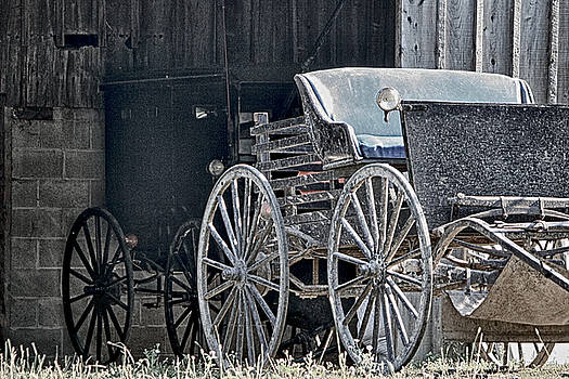 Amish Buggy At Rest by Frank Morales Jr