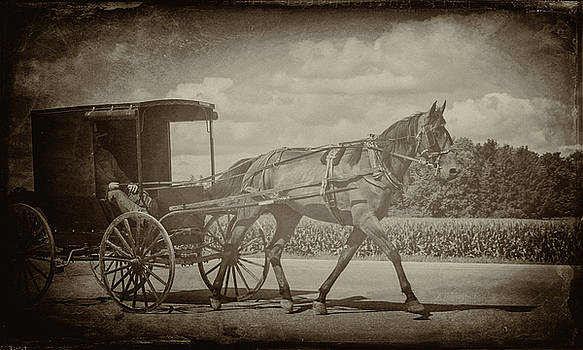 Amish Conveyance by Jim Cook