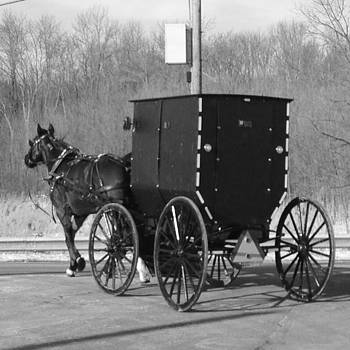 #amish #country #ohio #horse #buggy by Pete Michaud