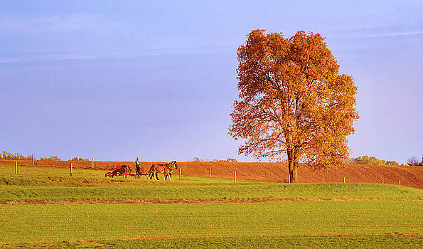 Amish country by Rima Biswas
