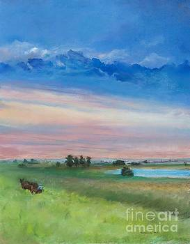 Amish Farm  by Robin Maria Pedrero