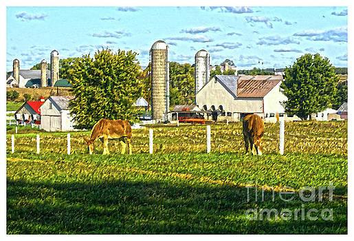 Amish Farm by Ronald Williamson