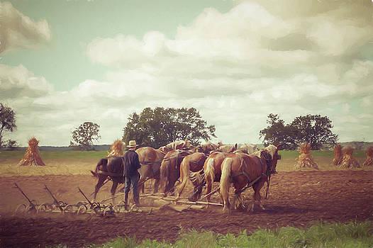 Amish Farming by Joel Witmeyer