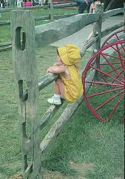 Amish girl on a fence by Roger Green