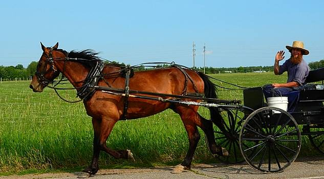 Amish Greeting by Mikel Classen