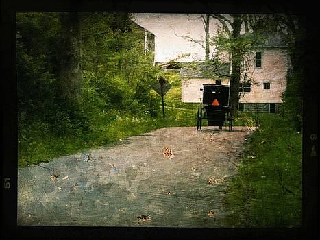 Amish Paradise  by Michael L Kimble