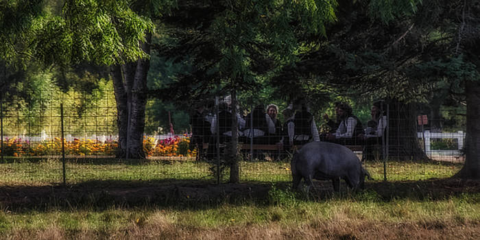 Amish Picnic by Dan Traun