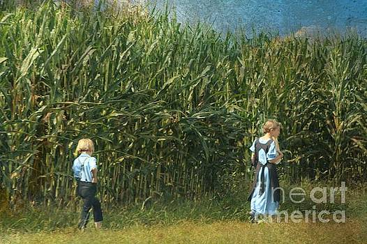 Amish Siblings In Cornfield  by Beth Ferris Sale